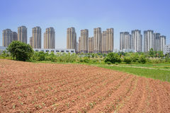 Newly cultivated field near modern city in sunny summer Royalty Free Stock Image