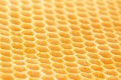 Newly drawn honeycomb Royalty Free Stock Image