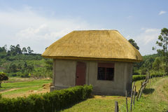 Thatched House. A newly erected thatched house at a village in Western Uganda stock photography