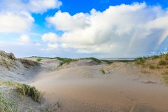 Dune landscape Dutch coast with sand drifts and wind eroded deep holes. Newly formed Dunes on Dutch North Sea coast at IJmuiderslag with wind sweeping stripes in Royalty Free Stock Photos