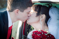 Newly-married couple. Kissing with red roses Stock Photos