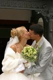 Newly-married couple. Kissed Royalty Free Stock Photos