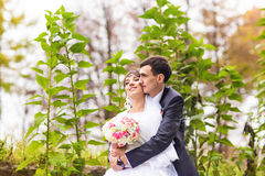 Newly married couple in autumn park Royalty Free Stock Photos