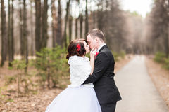 Newly married couple in autumn park Stock Images