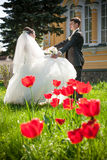 Newly married couple dancing on field with red tulips Stock Photo