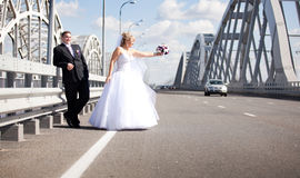 Newly married couple hitchhiking on road Royalty Free Stock Image