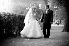 Newly married couple holdings hands and walking at park Royalty Free Stock Photography