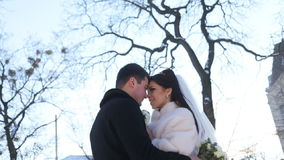 Newly-married couple kisses in winter stock video footage