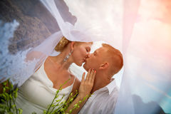 Newly married couple kissing in the park. Newly married couple kissing under bridal veil in the park Stock Photography