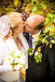 Newly married couple kissing at vineyard Stock Photography