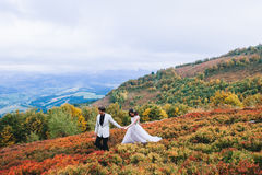 Newly married couple posing in the mountains. Happy newly married couple posing in the mountains Royalty Free Stock Images
