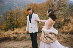 Newly married couple posing in the mountains royalty free stock photos