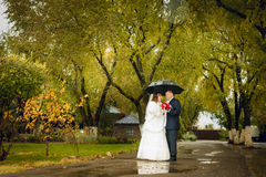 Newly married couple posing in park, autumn Royalty Free Stock Photos