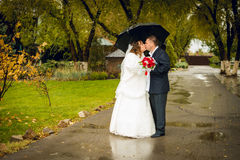 Newly married couple posing in park, autumn Stock Image