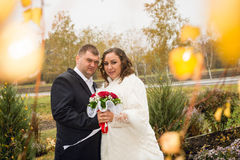 Newly married couple posing in park, autumn Stock Photos