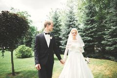Newly married couple running and jumping in park while holding hands Stock Images