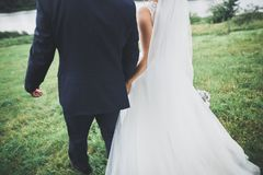 Newly married couple running and jumping in park while holding hands Stock Photography