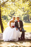 Newly married couple sitting on bench under tree at river bank Royalty Free Stock Photography