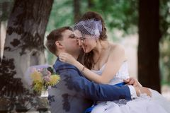 The newly married couple standing at park Royalty Free Stock Image