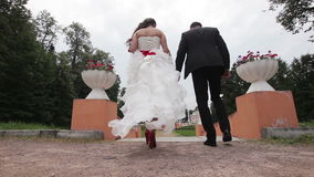 Newly married couple walk on park holding hands stock video