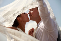Newly married pair Stock Images