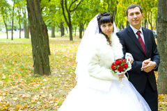 Newly married walk in autumn park Royalty Free Stock Images