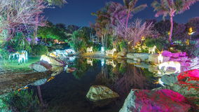 Newly opened Dubai Glow Garden timelapse is a state of Art architecture featuring environment friendly architecture. Lake with zebras and trees. Newly opened stock video footage
