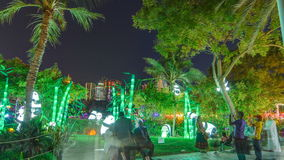 Newly opened Dubai Glow Garden timelapse is a state of Art architecture featuring environment friendly architecture. Pandas and palm trees. Newly opened Dubai stock video footage