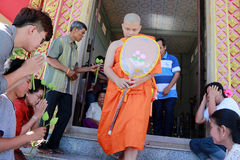 Newly ordained Buddhist monk pray with priest procession Stock Images