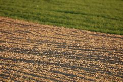 Newly ploughed agricultural field in spring Royalty Free Stock Photography