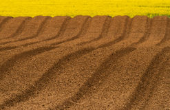 Newly Ploughed Field Ready For New Crops. Royalty Free Stock Photos