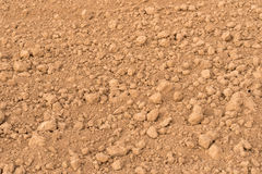 Newly ploughed field. Ready for new crops Royalty Free Stock Images