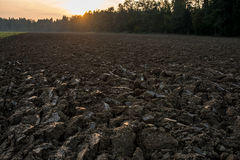 Newly ploughed field in spring time during sunset Royalty Free Stock Image