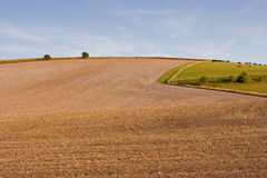 Farmland in Wiltshire Royalty Free Stock Photography