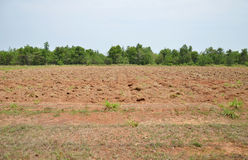 Newly plowed field Stock Image