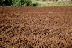 Newly plowed land ready to be seeded Royalty Free Stock Images