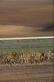 Newly sowed fields. Seasonal. Stock Photos