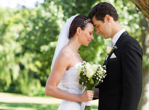Newly wed couple with head to head in garden Stock Photography