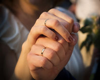 Newly wed couple holding each other by their hands Royalty Free Stock Photography