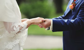 Newly wed couple holding hands, groom and bride. Stock Images