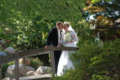 Newly Wed Couple Kiss on Bridge Stock Photography