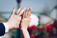 Newly wed couple`s hands with wedding rings.  Royalty Free Stock Image