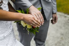 Newly wed couple`s hands with wedding rings Stock Image