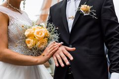 Newly wed couple`s hands with wedding rings.  Royalty Free Stock Photo