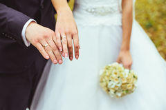 Newly wed couple's hands with wedding rings. Closeup newly weds show their wedding rings Royalty Free Stock Images