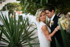 Newly Wedd. A newly wedd couple on a beach stock image