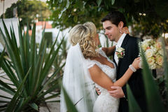 Newly Wedd Royalty Free Stock Images