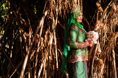 Newly wedded bride posing. Newly wedded Malay bride posing in an outdoor portraiture royalty free stock image