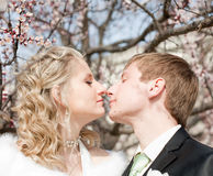 Newly wedded couple on open air Royalty Free Stock Images
