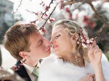 Newly wedded couple outdoors Stock Image